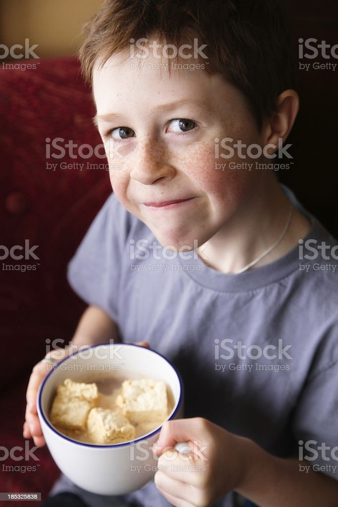 Adorable Little Boy with Cocoa and Homemade Marshmallows stock photo