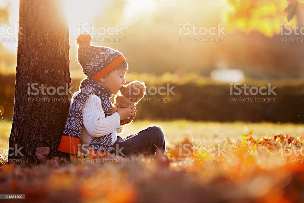 Adorable little boy with teddy bear in park stock photo