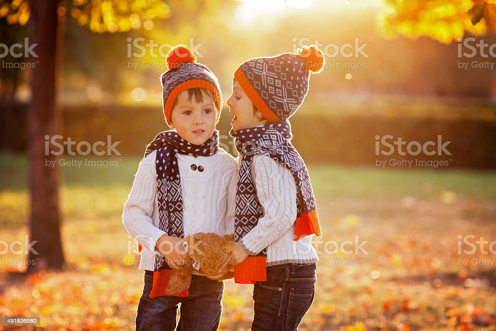 Adorable little brothers with teddy bear in park stock photo