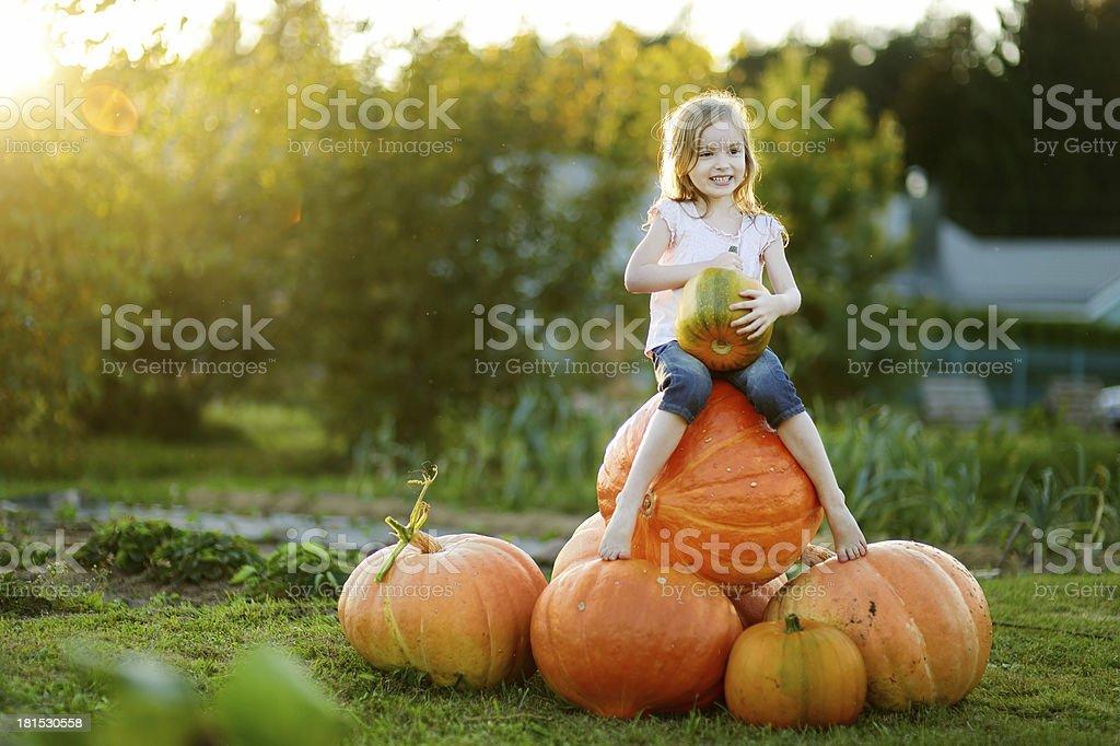 Adorable little girl embracing big pumpkin stock photo