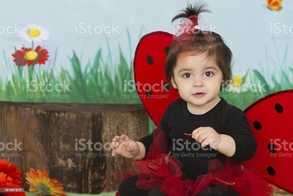 Adorable littlebug royalty-free stock photo