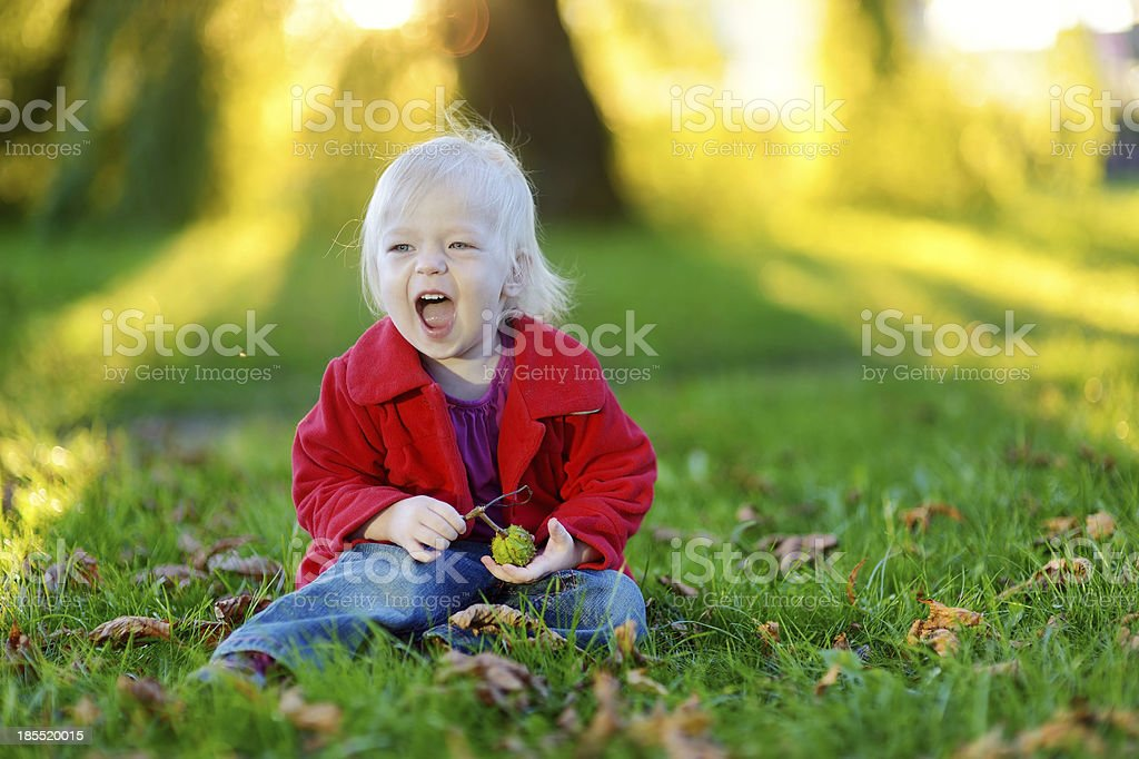 Adorable toddler girl playing with a chestnut royalty-free stock photo