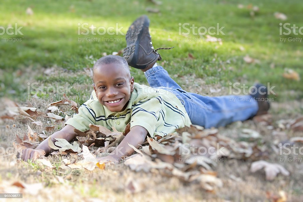 Adorable Young African American Boy in the Park stock photo