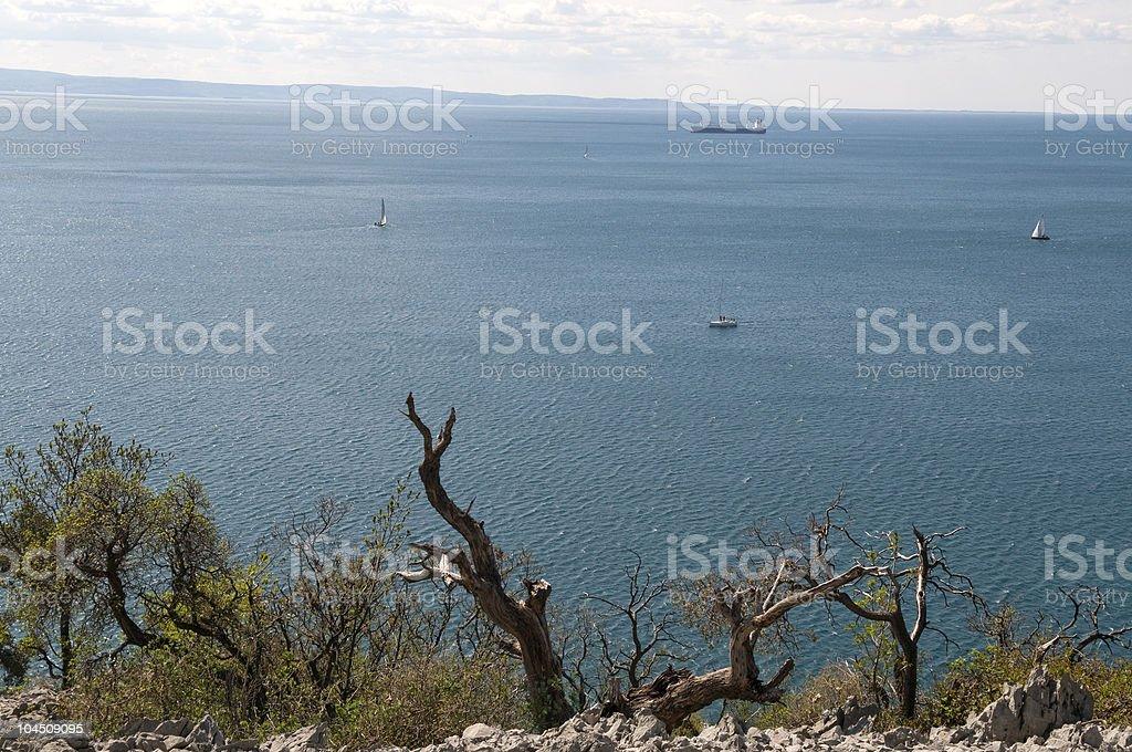 Adriatic Sea near Trieste royalty-free stock photo