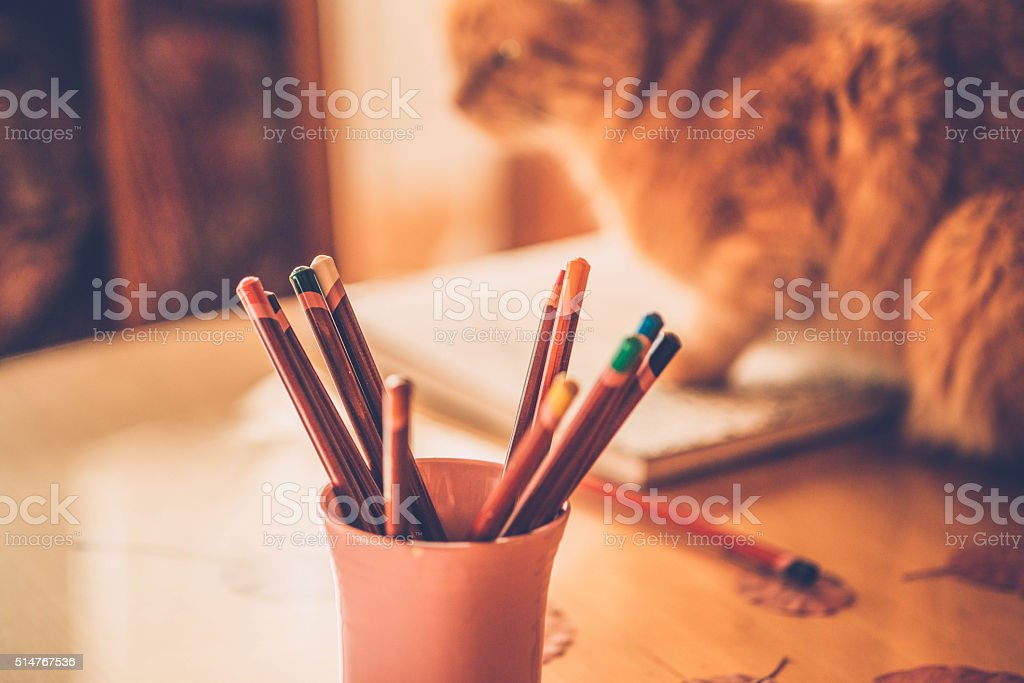 Adult Coloring Books - Colors pencils and a Ginger cat stock photo