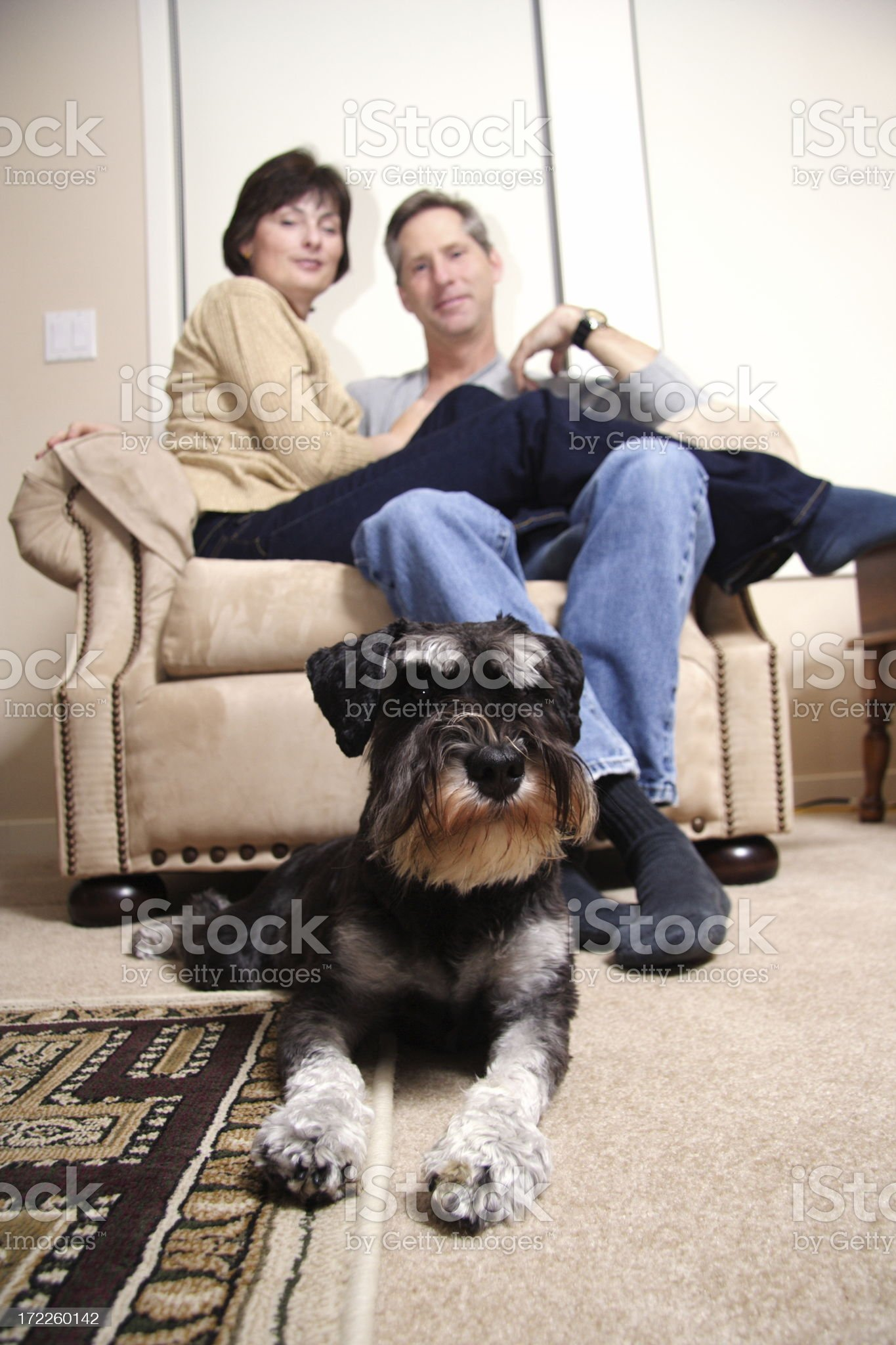 adult couple and their dog royalty-free stock photo