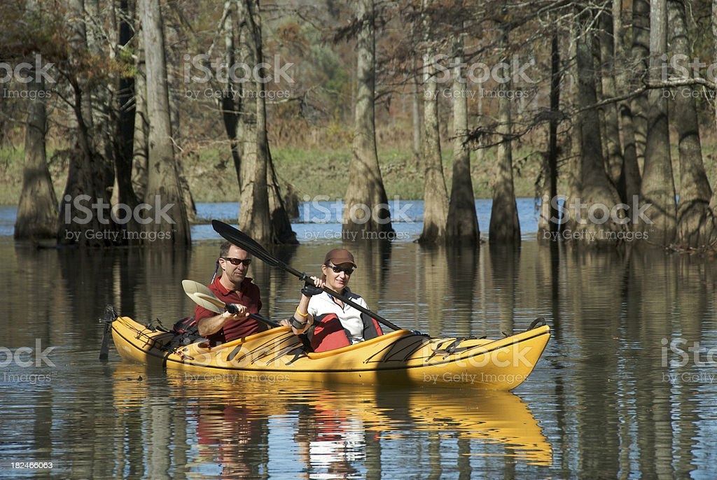 Adult Couple in a Tandem Kayak With Cypress Trees royalty-free stock photo