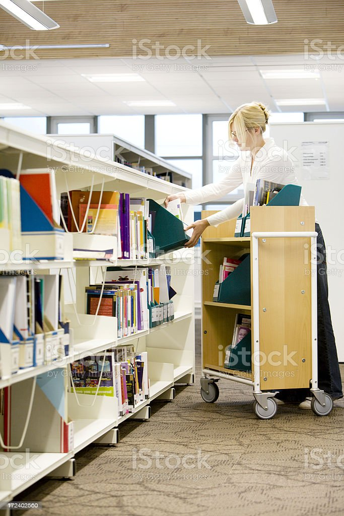 adult education: librarian royalty-free stock photo