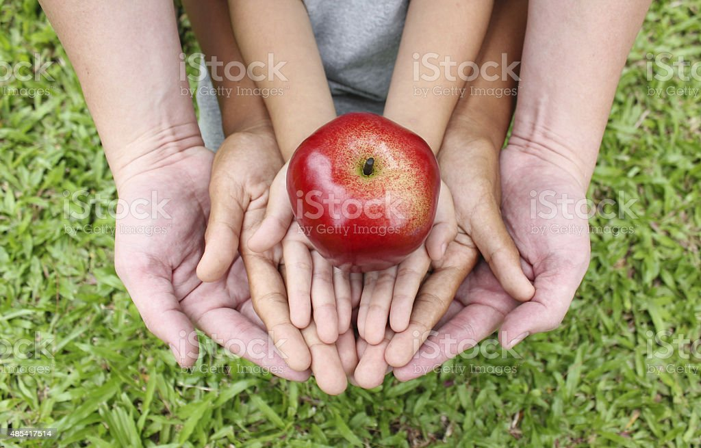 Adult hands holding kid hands with red apple on top stock photo