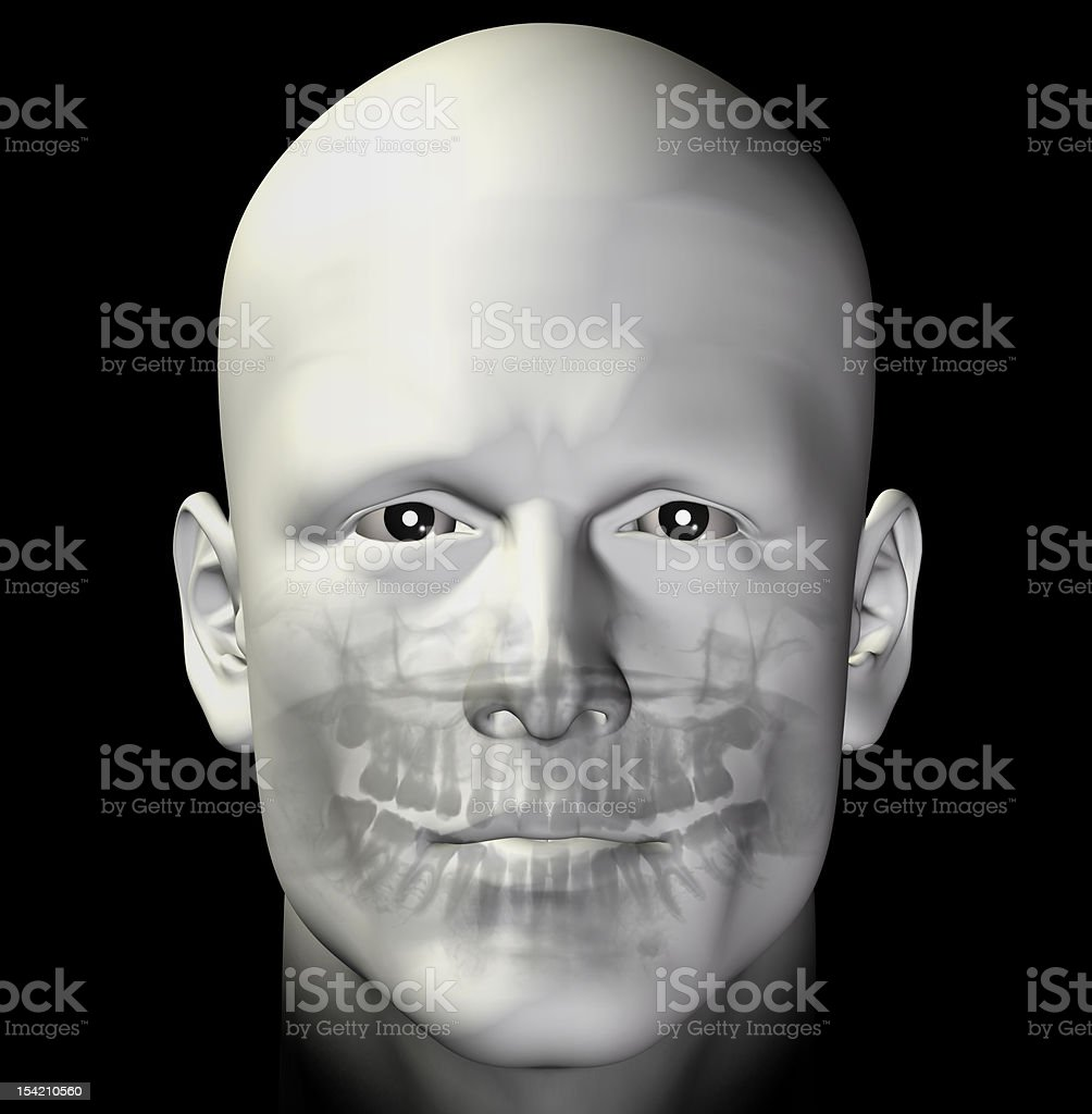 adult male dental scan royalty-free stock photo