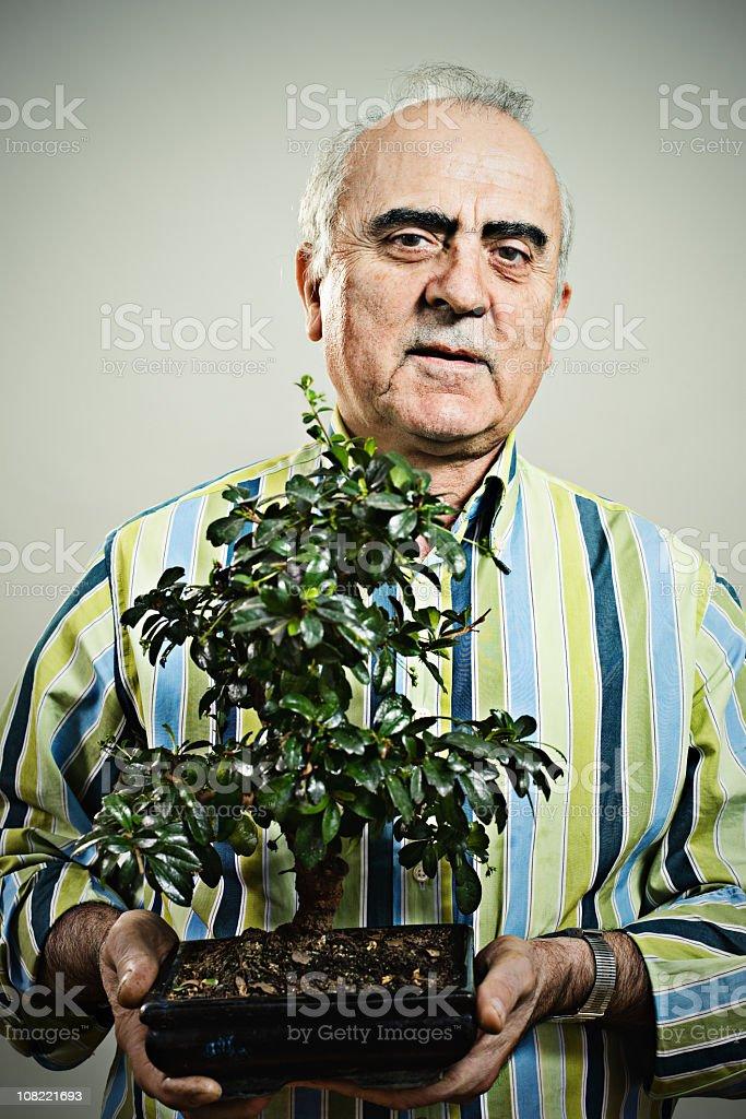 Adult man holding bonsai tree royalty-free stock photo