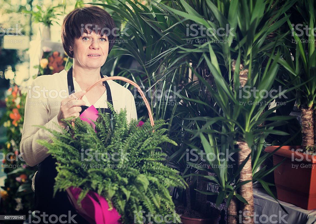 Adult shop assistant offering basket with fern stock photo