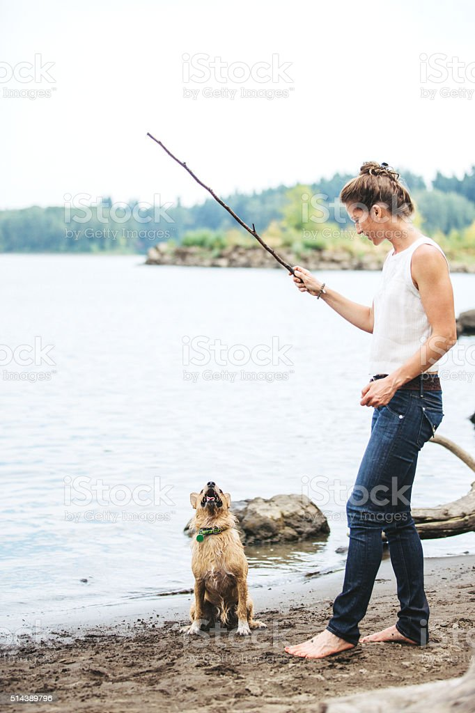Adult Woman Playing Fetch with Pet Dog stock photo