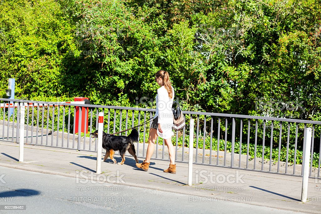 Adult women with dog walking on sidewalk at summertime stock photo