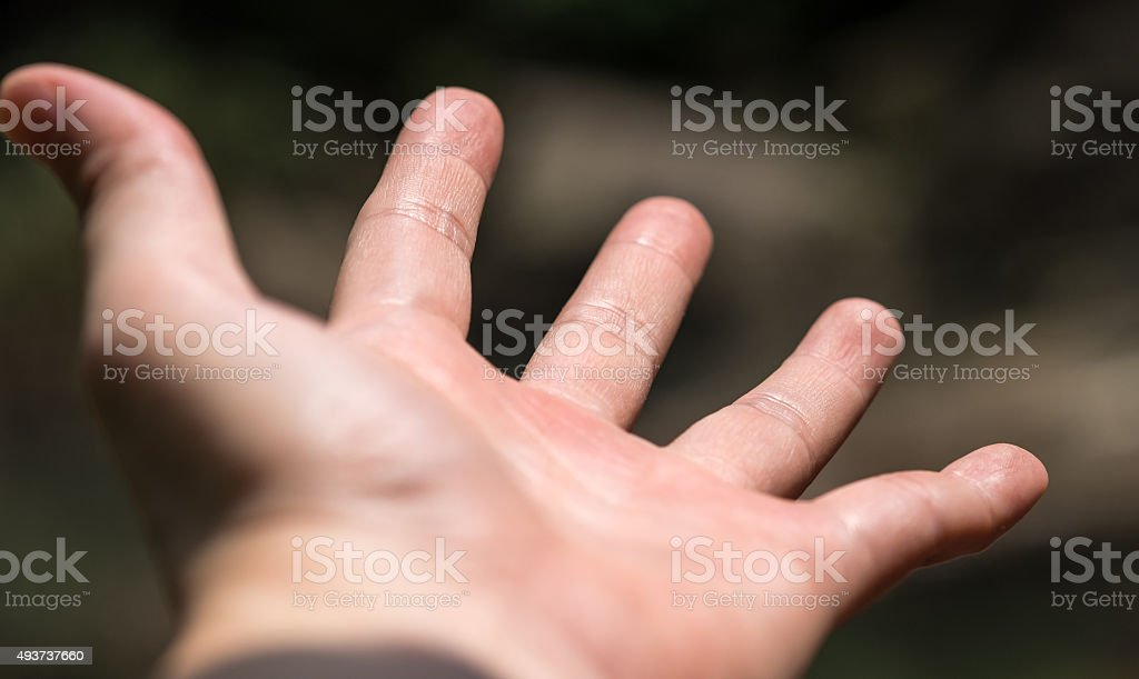 Adult's bare hand stock photo
