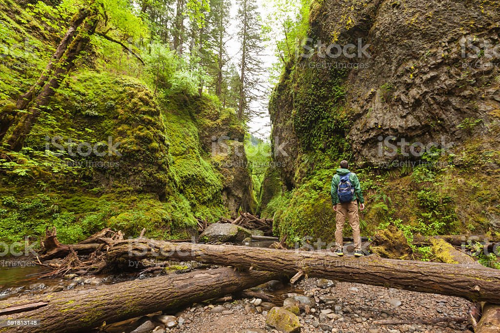Adventure man hiking with backpack, walking in Oneonta Gorge, outdoor stock photo