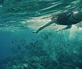 adventure underwater
