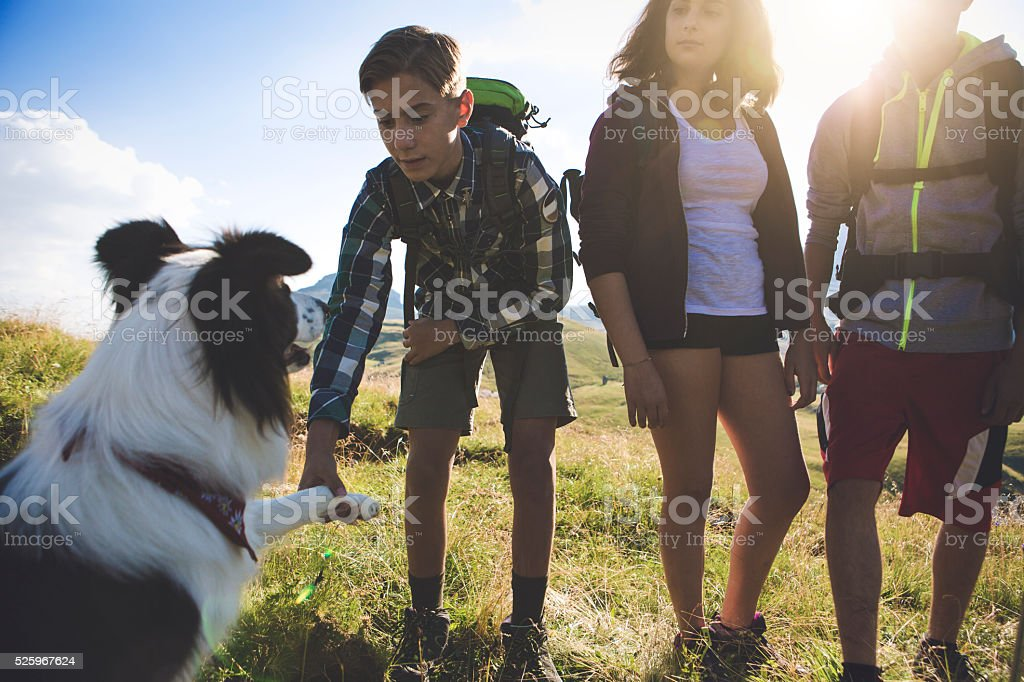 Adventures on the Dolomites: dog gives paw to boy stock photo