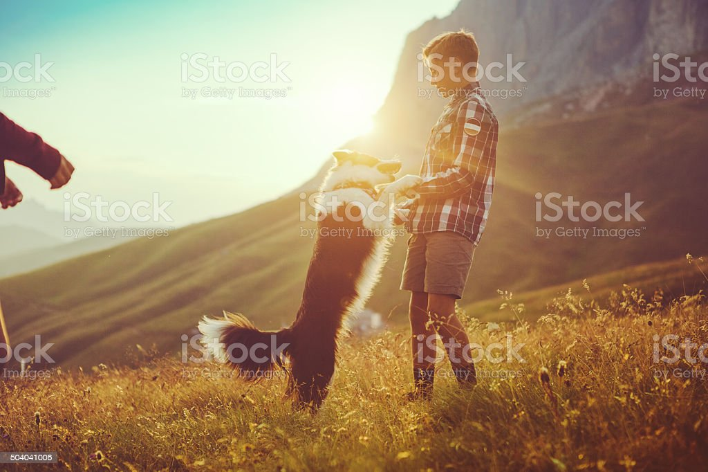 Adventures outddor: boy fights with dog stock photo