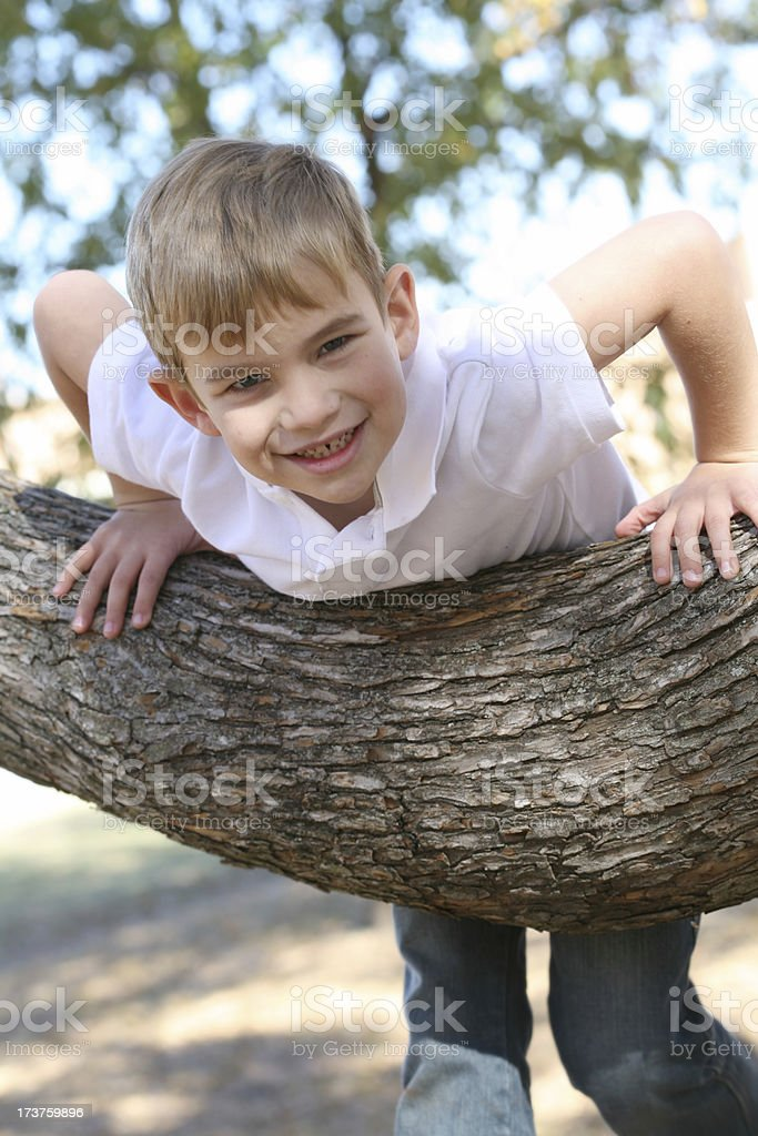 Adventurous Blonde Boy Climbs A Tree At The Park royalty-free stock photo