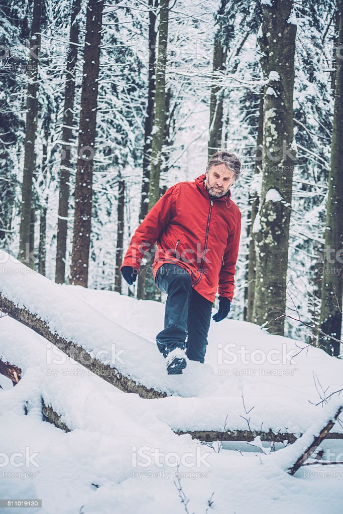 Adventurous Senior Man Hiking in Forest, Snowing, Julian Alps, Europe stock photo