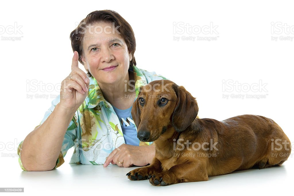 advice for training a dog royalty-free stock photo