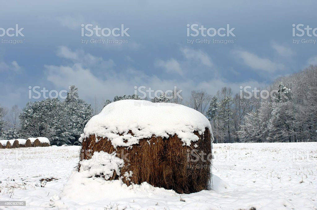 Advisory Winter Storm stock photo