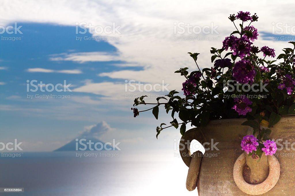 Aeolian Islands Seascape: Smoking Volcanic Stromboli, Flowers Foreground stock photo