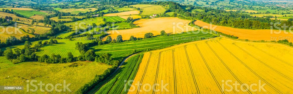 Aerial agricultural panorama over farm fields green pasture golden crops stock photo