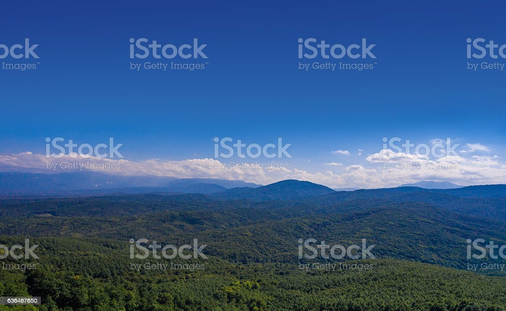 Aerial landscape. Hills covered with forest. stock photo