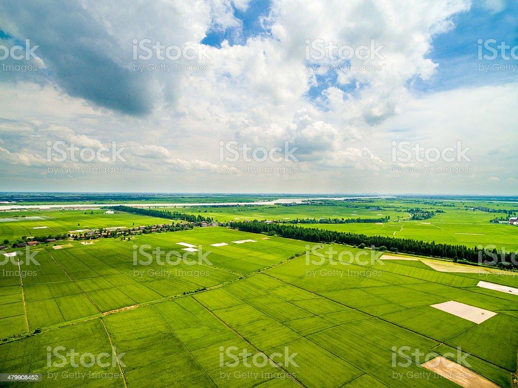 Aerial large rice farm stock photo