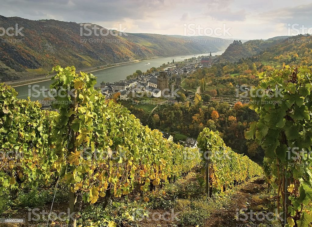 Aerial nature shot of Oberwesel stock photo