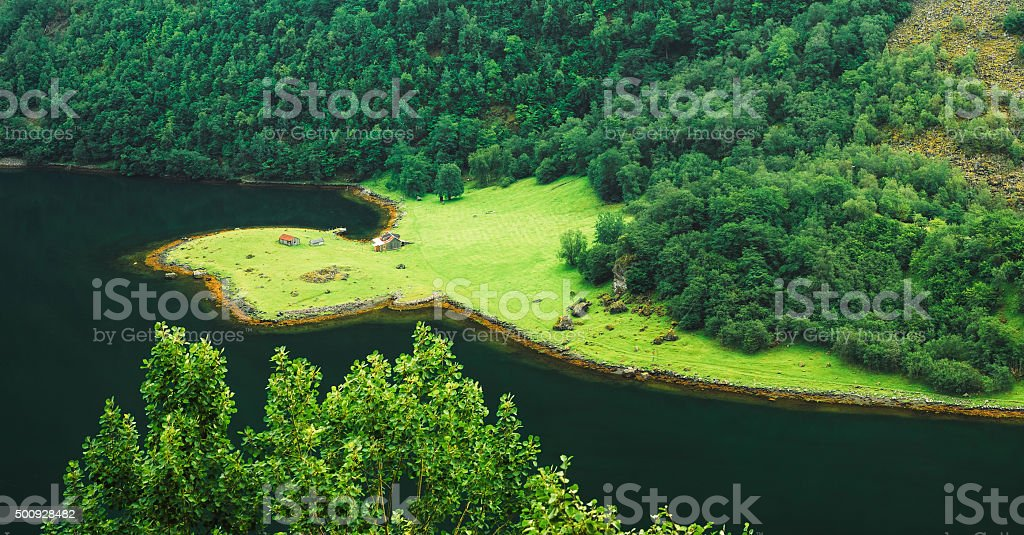 Aerial panoramic view of forest and shore of fjord stock photo