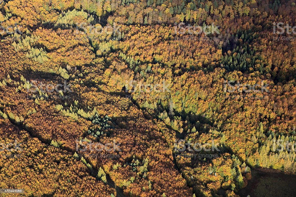 Aerial photo of a autumn forest royalty-free stock photo
