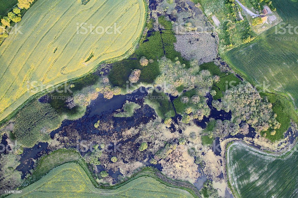 Aerial photo of a swamp. Spring royalty-free stock photo