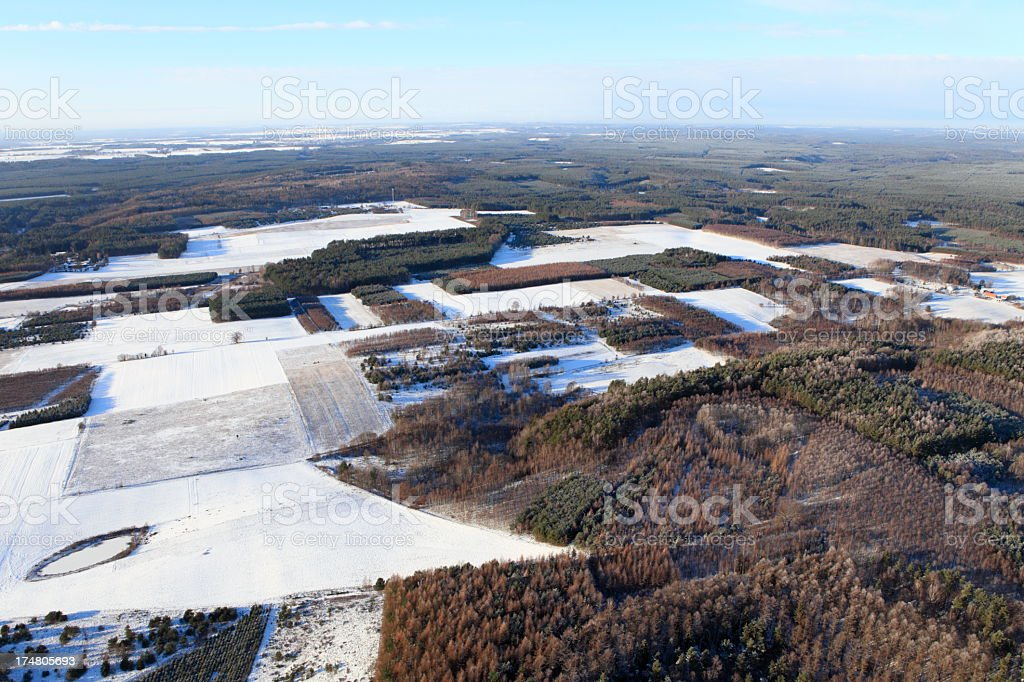 Aerial photo of a winter forest stock photo