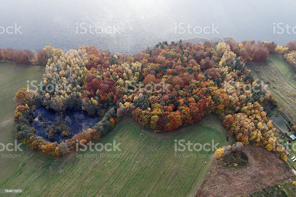 Aerial photo of autumn forest and a lake. royalty-free stock photo