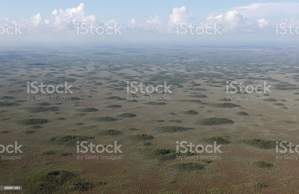 Aerial photo of Big Cypress National Preserve, Florida stock photo