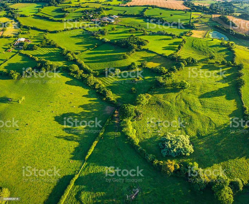 Aerial photo over vibrant green fields livestock pasture country farms stock photo