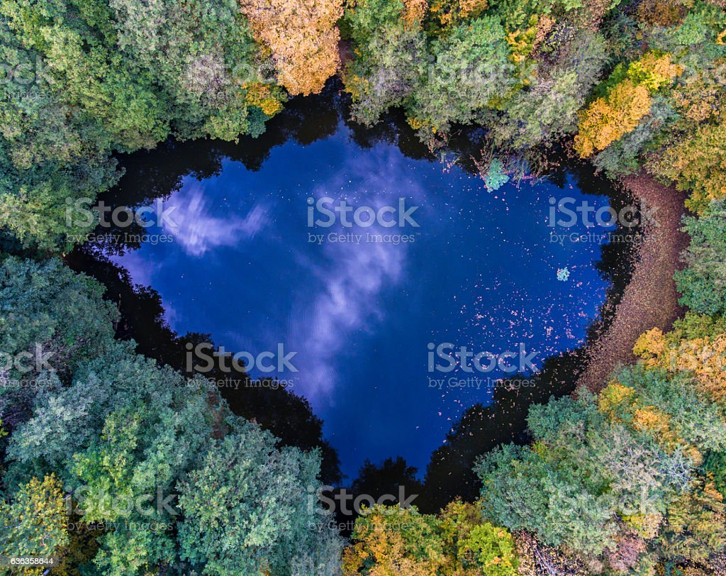 Aerial top view of wild forest lake. stock photo