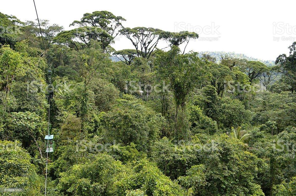 Aerial tram in Costa Rican rainforest stock photo