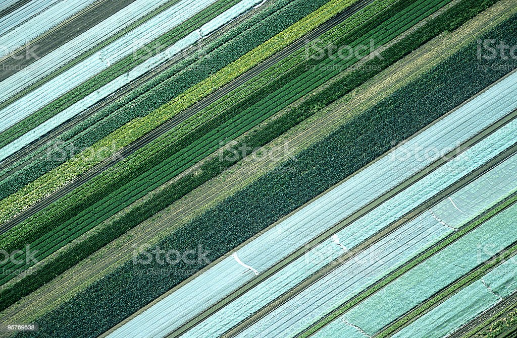 Aerial View of Agricultural Landscape stock photo