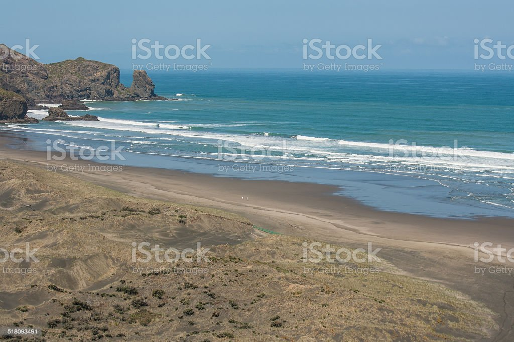 aerial view of Bethells Beach stock photo