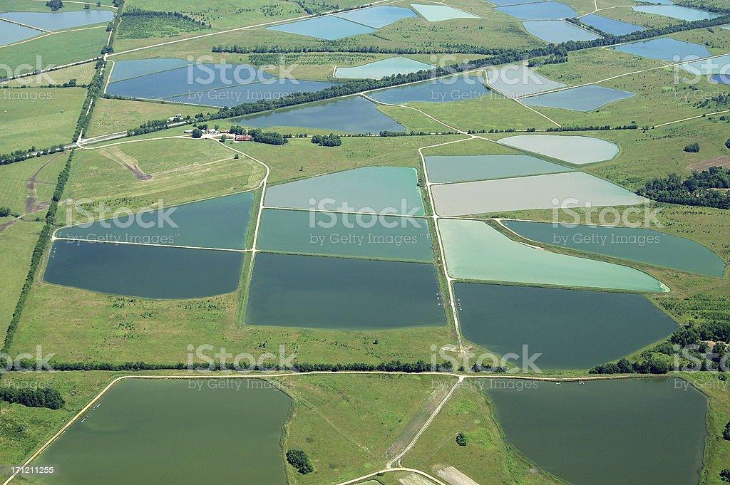 Aerial View of Catfish Farm Ponds stock photo
