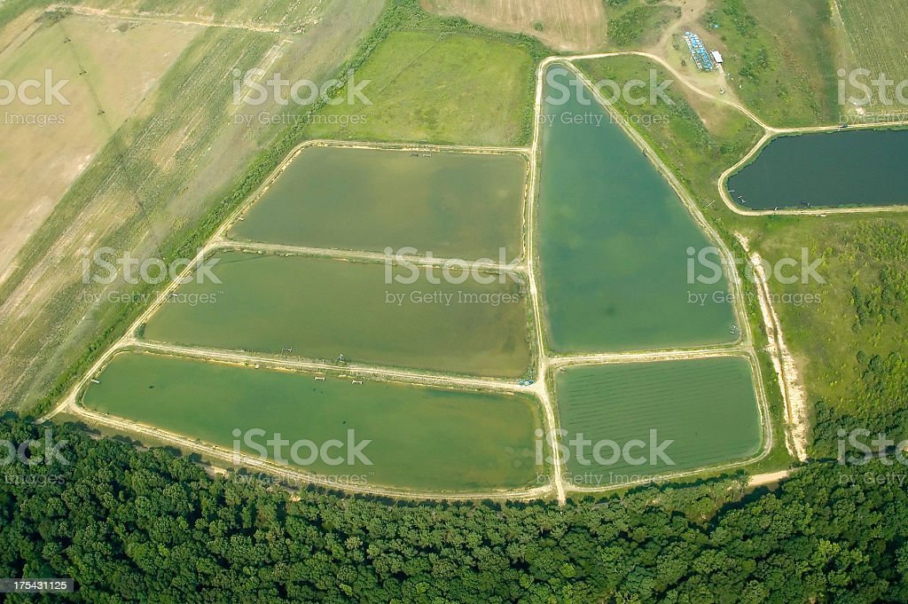 Aerial view of Catfish Ponds in Alabama stock photo