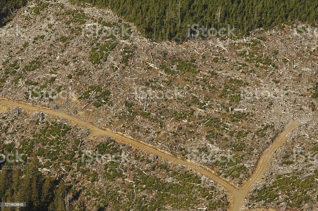Aerial view of clearcutting environmental damage stock photo