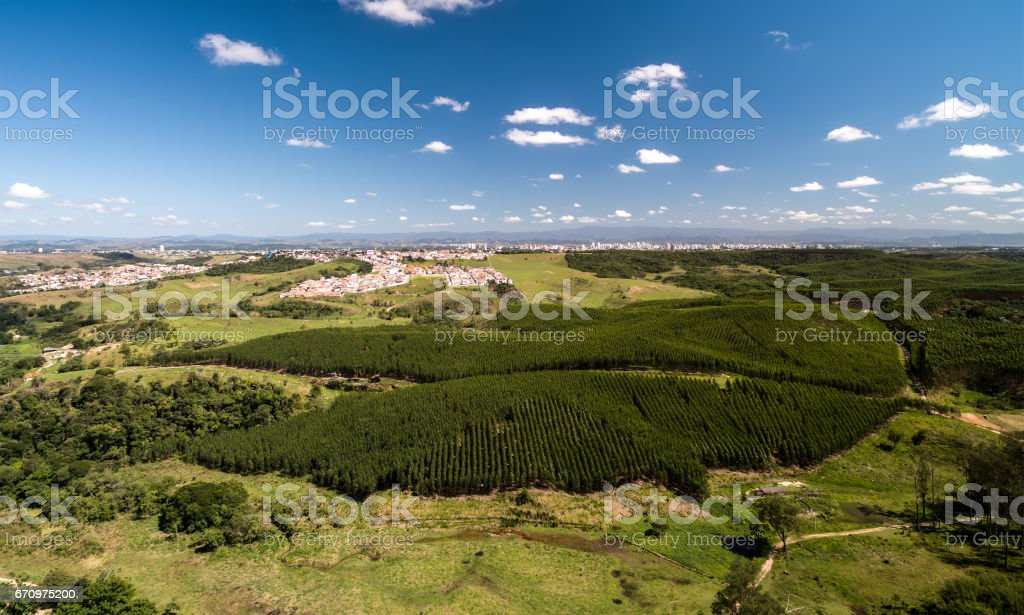 Aerial View of Countryside of Sao Paulo and Eucalyptus Forest, Brazil stock photo