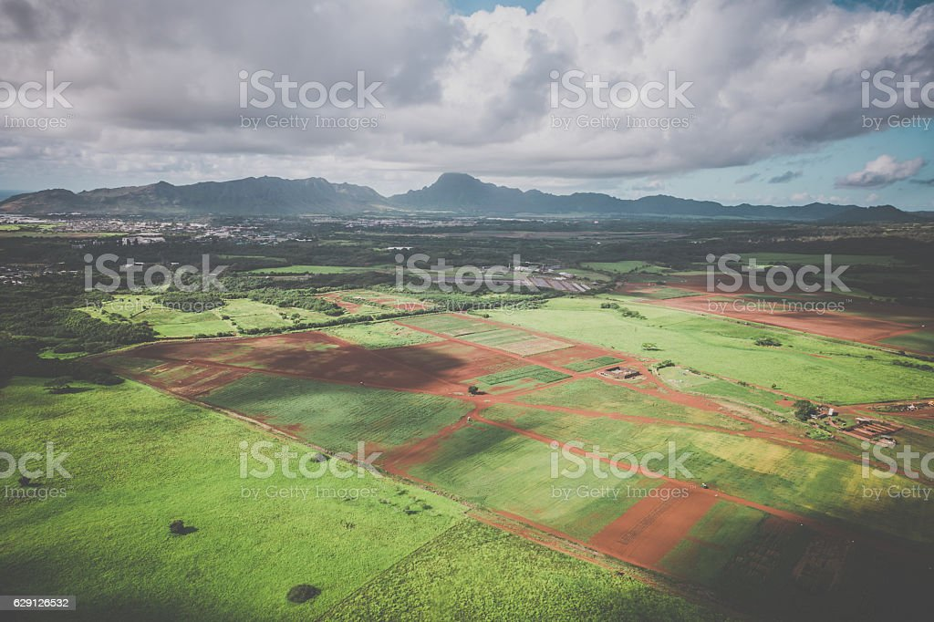 Aerial View of Cultivated Land, Kauai, Hawaii stock photo