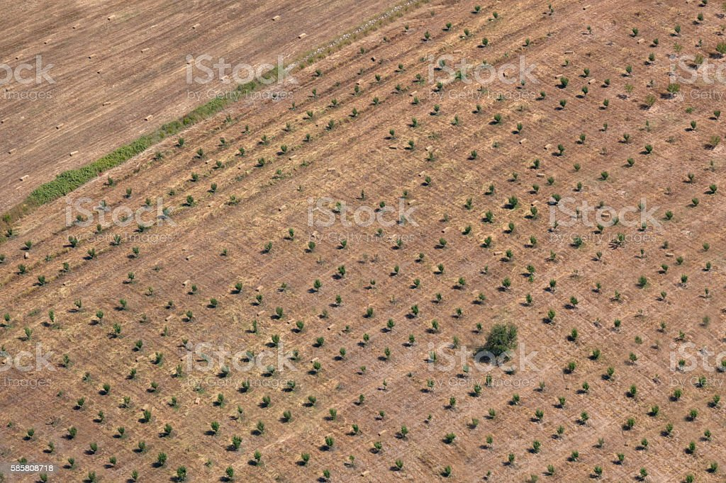 Aerial view of field stock photo