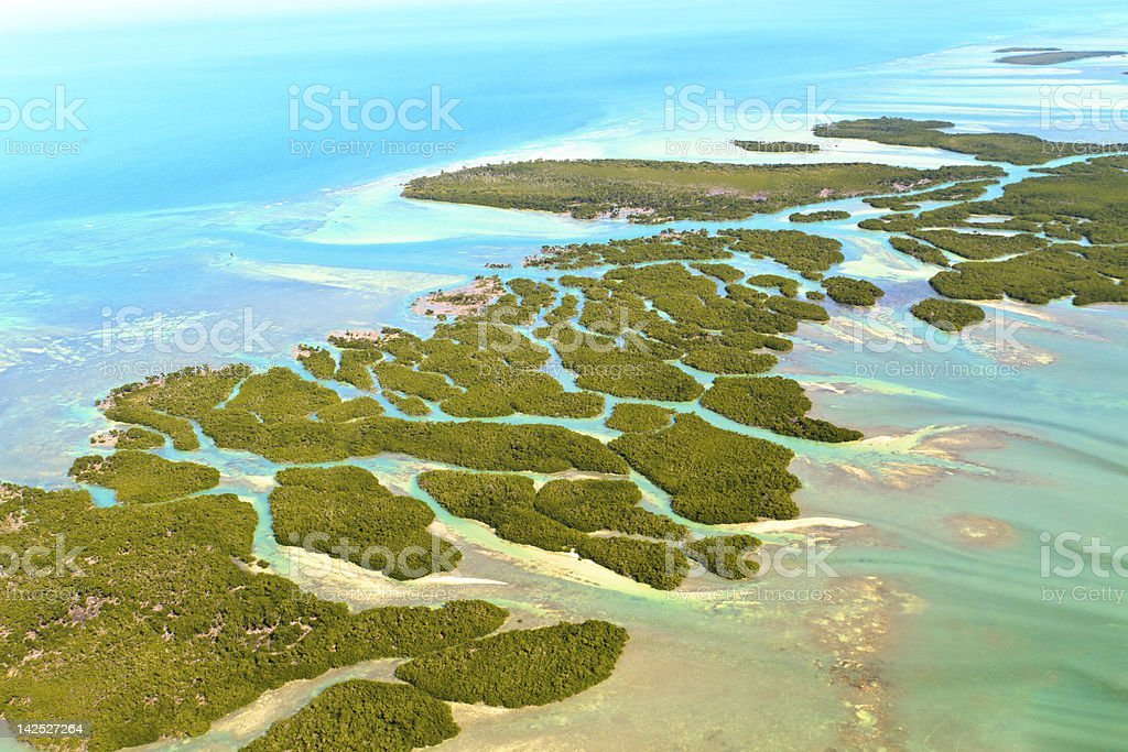 Aerial view of Florida keys and ocean  stock photo
